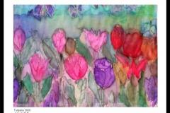 tulipany-jedwab